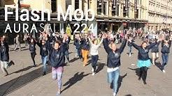 Aura Salla 224 Flash Mob 17.5.2014