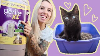 Litter Genie: a must-have for fostering!