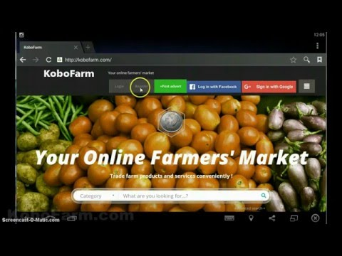 How to Post Advert on KoboFarm