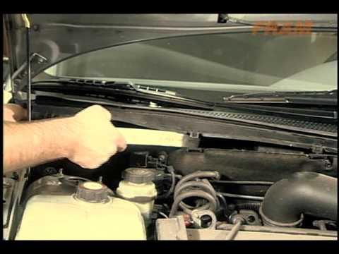 Ford Focus Como Trocar O Filtro De Cabine Youtube