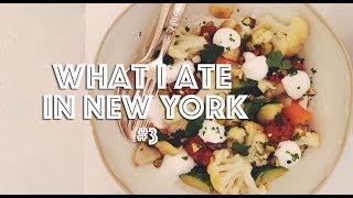 WHAT I ATE IN NEW YORK VEGAN 3  LAIKA MAGAZINE SHOOT  Lauren In Real Life
