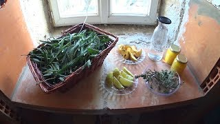 Sirop contre la toux  fait maison  (plantain miel thym)  HORS SÉRIE N°1