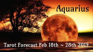 aquarius luck is fated for you feb 18th 28th