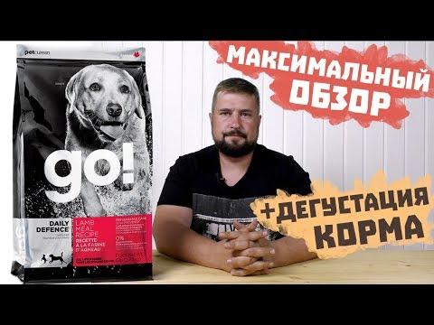 Сухой корм GO! для собак с ягненком / Обзор корма и дегустация корма / Корм Гоу для собак