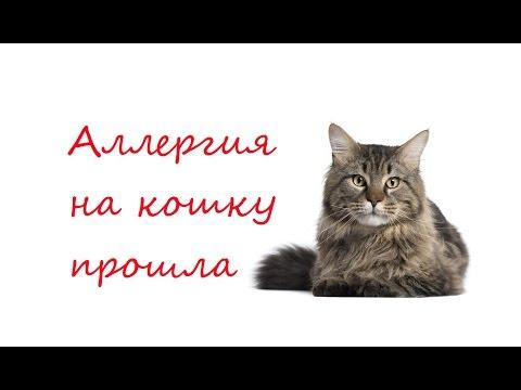 AliveMax. Отзыв: аллергия на кошку прошла!!!