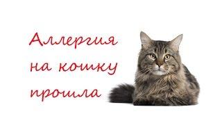 AliveMax. Отзыв: аллергия на кошку прошла!!!(AliveMax. Отзыв: аллергия на кошку прошла!!! Alivemax - вызов традиционной медицине! Генеральная чистка организма..., 2016-01-26T16:55:08.000Z)