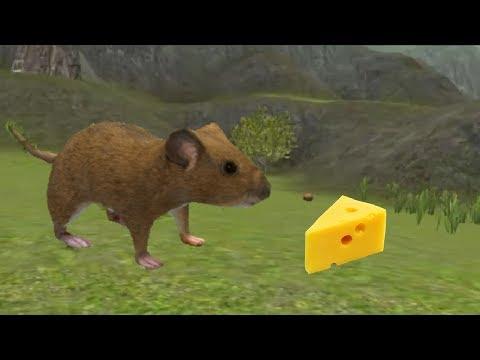 Симулятор Мышей Игра Скачать - фото 10