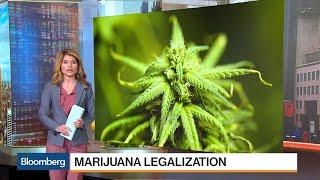 QuickTake: Marijuana's Road to U.S. Legalization