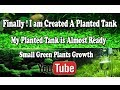 Finally I am Created A Planted Tank | My Planted Tank is Almost Ready | Green Plants !!!
