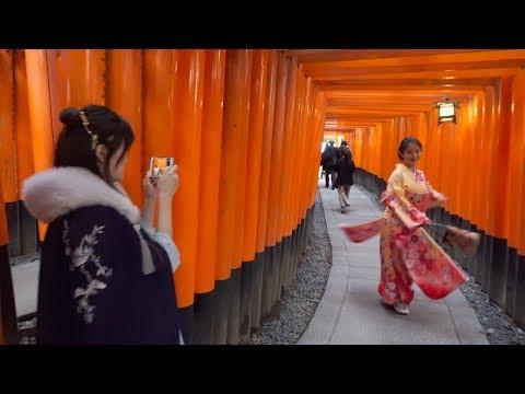 Japan, Day 9.4, Kyoto - Walking around Fushimi Inari Taisha 伏見稲荷大社, Mount Inari, Torii Gates [4K]