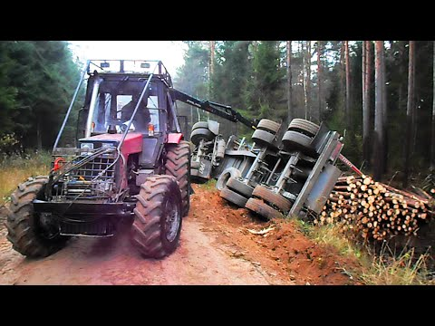 Full trailer of wood turned over, Belarus Mtz 892.2 forestry tractor  helps to get up