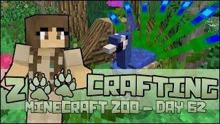 Beautiful Peafowl Gardens!! 🐘 Zoo Crafting: Season 2 - Episode #62