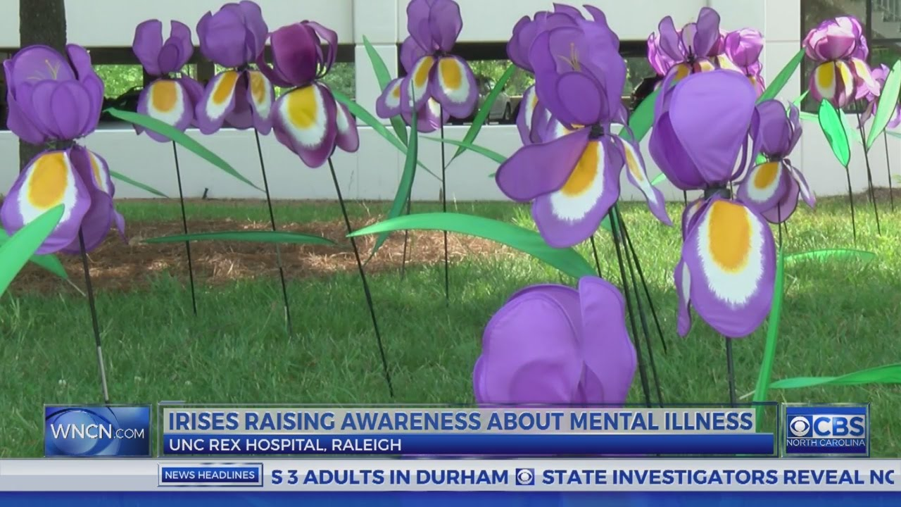 1000 Artificial Flowers In Raleigh Bring Attention To Mental