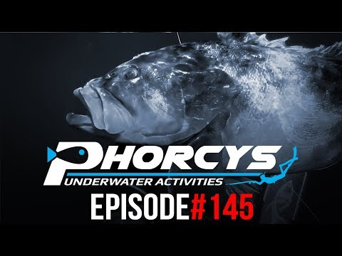 PHORCYS Spearfishing Worldwide Videos #145 - Underwater Activities 2019