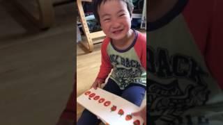 はらぺこあおむしの歌が大好き!4歳半の次男が音読っぽく歌っています。...