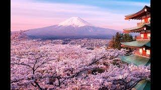 Дзен меняет вашу жизнь. Япония под влиянием Дзен.  Красивый документальный фильм