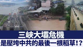 王維洛談三峽大壩危機!水位已超防洪限制2米 新唐人亞太電視 20200623