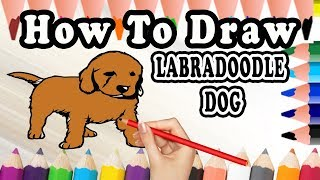 How To Draw A Labradoodle DOG | Drawing step by step  Labradoodle Dog | Draw Easy For Kids