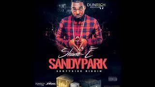 Shane E - Sandy Park (Official Audio)