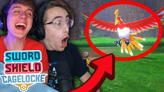 THIS IS INCREDIBLE! • Pokemon Sword and Shield Randomizer Cagelocke • 15
