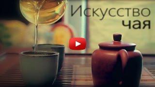 Искусство чая.Заваривание белого чая бай хао инь чжень.Чайная церемония
