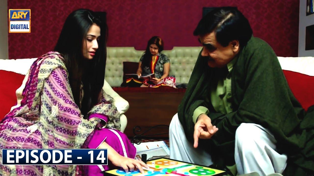 Paiwand Episode 14 | Sana Javed | Ahmed Ali | ARY Digital