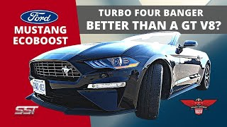 MUSTANG ECOBOOST 2.3 LITRE TURBO ( Better Than A V8 GT? )