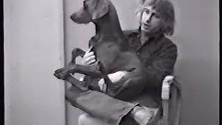 William Wegman, Selected Works (Dog Duet, Used Car Salesman, Dog Biscuit in Glass Jar), 1972