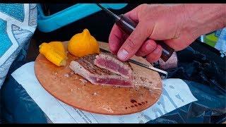 Grilling On The Beach! Steak, Mahi-mahi And Ahi Tuna Firebox Camping Stove
