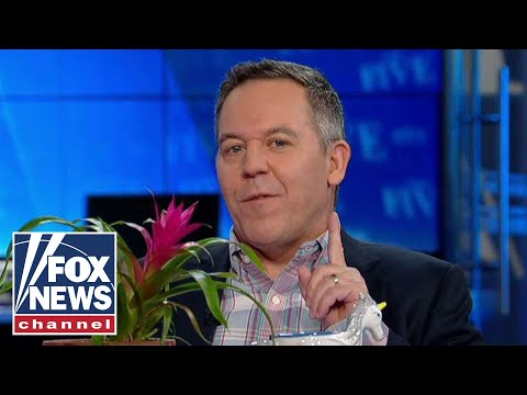Gutfeld on Take