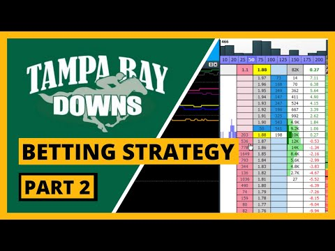 American Betting Strategy for Tampa Bay Downs...