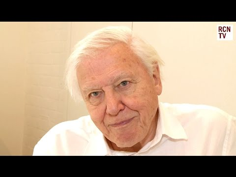 David Attenborough Interview - Natural Curiosities & Life On Earth