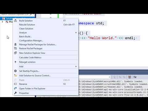 How to prevent console window from closing on Visual Studio C / C++