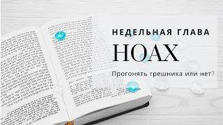 Недельная глава Ноах | Урок от директора портала Ваикра р. Яакова Шатагина