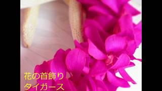 「花の首飾り」は、1972年に天地真理(アルバム「虹をわたって」に収録...