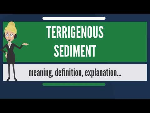 What is TERRIGENOUS SEDIMENT? what does TERRIGENOUS SEDIMENT mean? TERRIGENOUS SEDIMENT meaning
