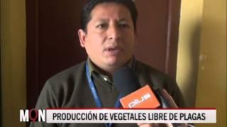 27-08-2015-17:50 PRODUCCIÓN DE VEGETALES LIBRE DE PLAGAS