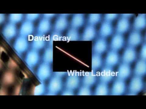 "David Gray - ""Say Hello, Wave Goodbye"""