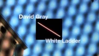 "David Gray - ""Say Hello, Wave Goodbye"""