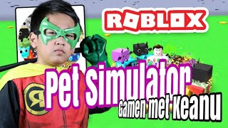 Keanu - Roblox Pet Simulator Gameplay (Dutch) Vlog#4