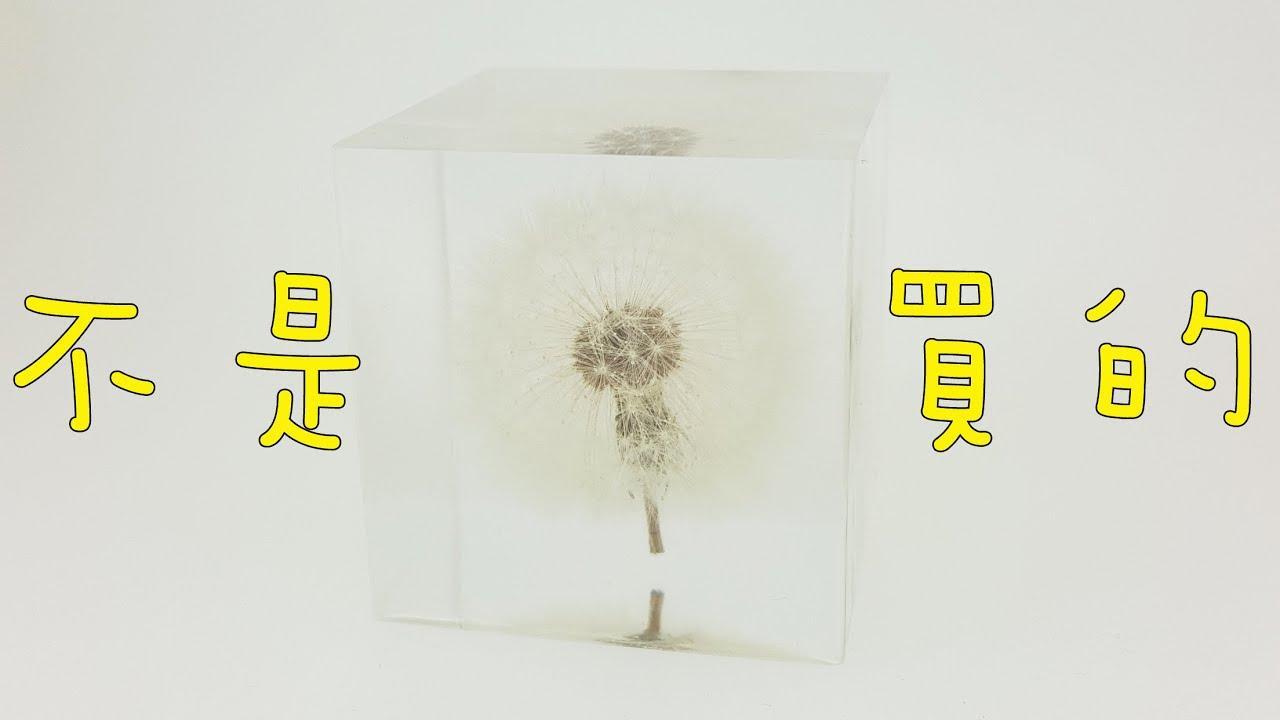如何制作完美版蒲公英標本的祕訣HOW TO MAKE a resin of dandelion