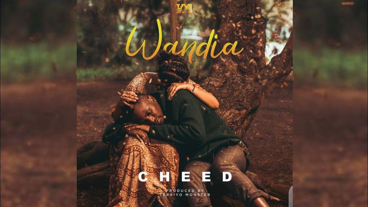 DOWNLOAD Wimbo MPYA wa CHEED – WANDIA (Official Music Audio) kuandika historia. Mp3 song