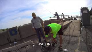 texoma spillways fishing