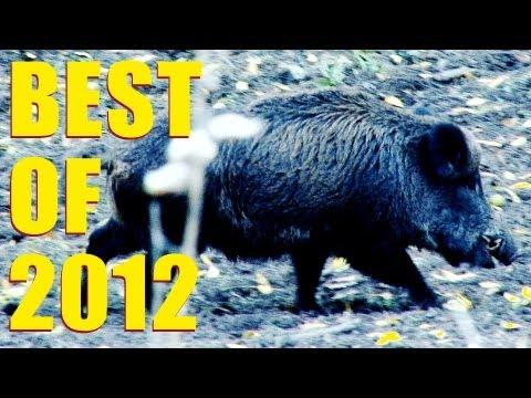 Fieldsports Britain - Best of 2012  (episode 161)