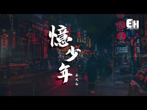 王大毛 - 憶少年『公子翩翩好俊俏,我的少年會不會寂寥?』【動態歌詞Lyrics】