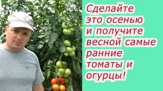 Что нужно сделать осенью,  чтобы получить ранний урожай овощей весной.