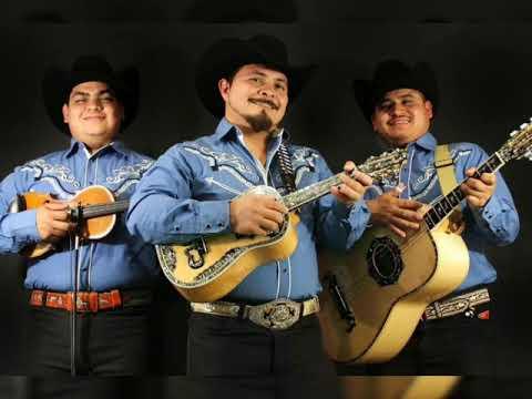 Trio Calibre Hidalguense - El Malgastado 💸💸
