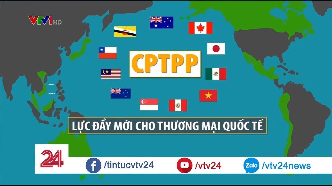 CPTPP Lực Đẩy Mới Cho Thương Mại Quốc Tế  - Tin Tức VTV24