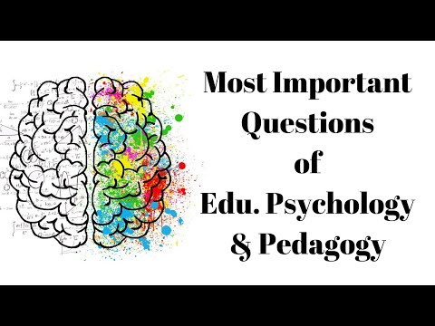 Most Important Questions Of Educational Psychology For NTA NET/SET/TET/CTET