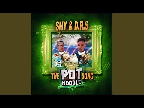 The Pot Noodle Song